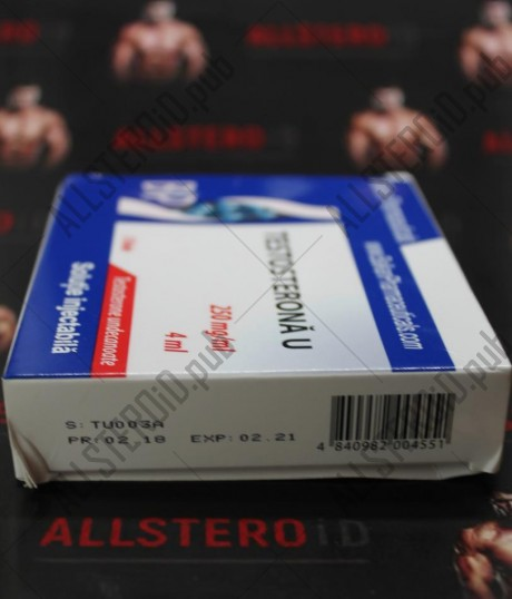 Testosterone U - 1000 мг по 4мл